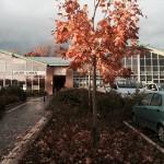 Foto Centro Marconi2