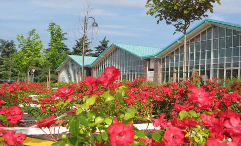 Centro Marconi