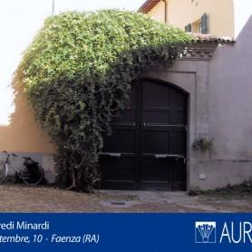 Veduta_Palazzo_Eredi_Minardi_05